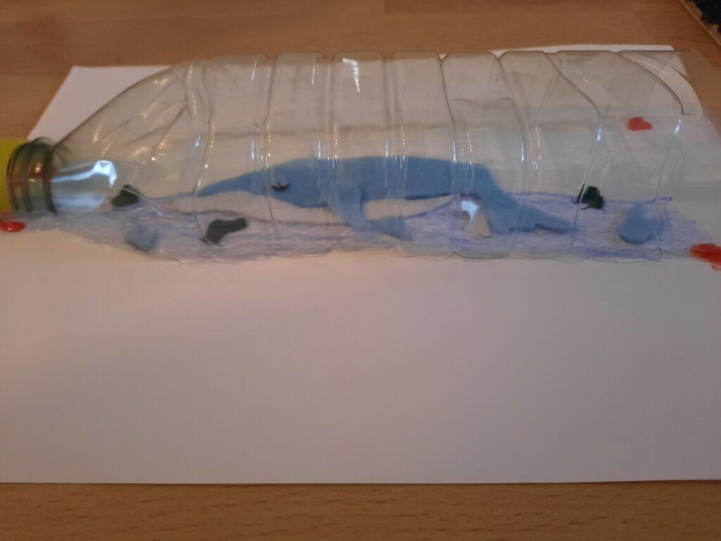 Bild von einem Wal in einer Flasche